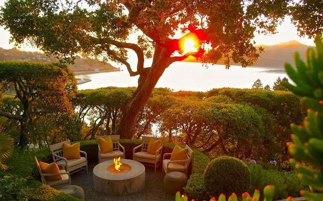 All ombra delle piante ornamentali gli alberi da giardino for Piante sempreverdi per giardino