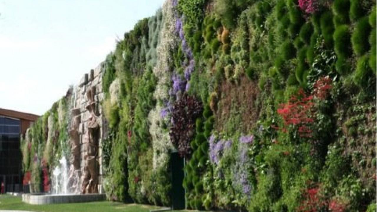 Giardini Verticali Fai Da Te scopriamo insieme il 'giardino verticale'